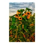 Sunflowers Shower Curtain 48  x 72  (Small)  42.18 x64.8  Curtain