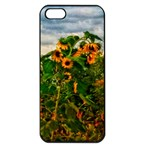 Sunflowers iPhone 5 Seamless Case (Black) Front