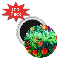 Intense Flowers 1 75  Magnets (100 Pack)  by okhismakingart