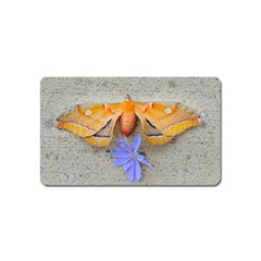 Moth And Chicory Magnet (name Card) by okhismakingart