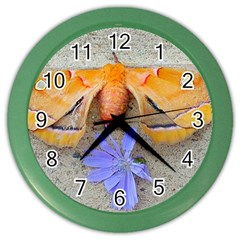Moth And Chicory Color Wall Clock by okhismakingart