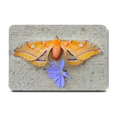 Moth And Chicory Small Doormat  by okhismakingart