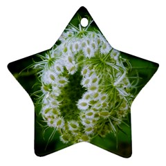 Green Closing Queen Annes Lace Ornament (star)