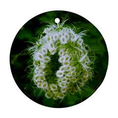 Green Closing Queen Annes Lace Round Ornament (two Sides)