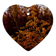 Goldenrod Version Ii Ornament (heart)