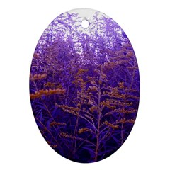 Yellow And Blue Goldenrod Oval Ornament (two Sides)