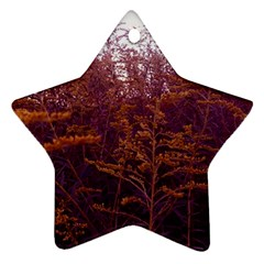 Red And Yellow Goldenrod Ornament (star)