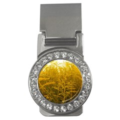 Gold Goldenrod Money Clips (cz)