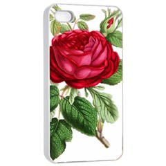 Rose   Vintage Iphone 4/4s Seamless Case (white) by WensdaiAddamns