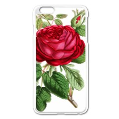 Rose   Vintage Iphone 6 Plus/6s Plus Enamel White Case by WensdaiAddamns