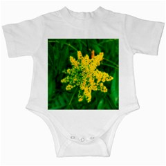Yellow Sumac Bloom Infant Creepers
