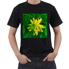 Yellow Sumac Bloom Men s T Shirt (black) (two Sided)