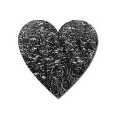 Black And White Queen Anne s Lace Hillside Heart Magnet by okhismakingart