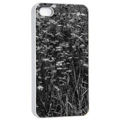 Black And White Queen Anne s Lace Hillside Iphone 4/4s Seamless Case (white)