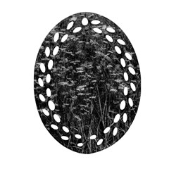 Black And White Queen Anne s Lace Hillside Ornament (oval Filigree)