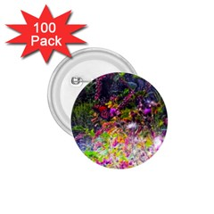 Magic Butterfly 1 75  Buttons (100 Pack)