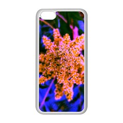 Yellow, Pink, And Blue Sumac Bloom Iphone 5c Seamless Case (white)