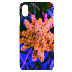 Yellow, Pink, And Blue Sumac Bloom Iphone Xs Max