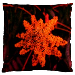 Orange Sumac Bloom Standard Flano Cushion Case (two Sides)