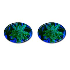 Blue And Green Sumac Bloom Cufflinks (oval)