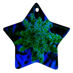 Blue And Green Sumac Bloom Star Ornament (two Sides)