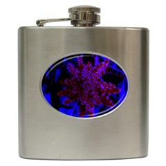 Maroon And Blue Sumac Bloom Hip Flask (6 Oz)