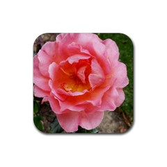 Pink Rose Rubber Square Coaster (4 Pack)