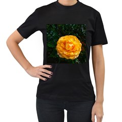 Yellow Rose Women s T Shirt (black) (two Sided)