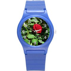 Deep Red Rose Round Plastic Sport Watch (s)