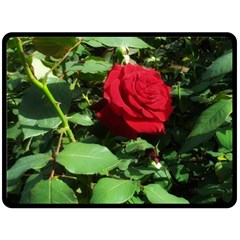 Deep Red Rose Double Sided Fleece Blanket (large)
