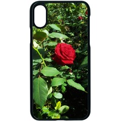 Deep Red Rose Iphone Xs Seamless Case (black) by okhismakingart