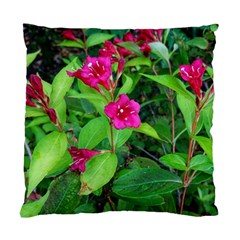 Purple Park Flowers Standard Cushion Case (two Sides)