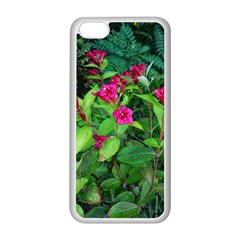 Purple Park Flowers Iphone 5c Seamless Case (white)
