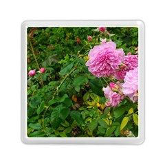 Light Pink Roses Memory Card Reader (square) by okhismakingart