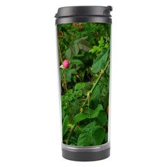 Light Pink Roses Travel Tumbler