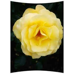 Pale Yellow Rose Back Support Cushion
