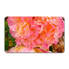 Folded Pink And Orange Rose Magnet (rectangular)