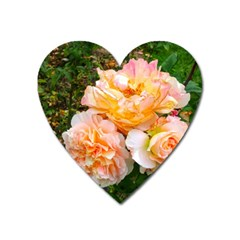 Bunch Of Orange And Pink Roses Heart Magnet by okhismakingart