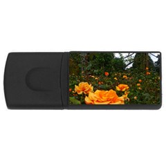 Orange Rose Field Rectangular Usb Flash Drive
