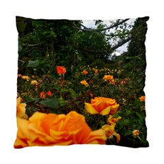 Orange Rose Field Standard Cushion Case (one Side)