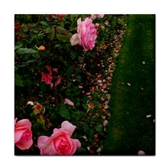 Pink Rose Field (sideways) Face Towel