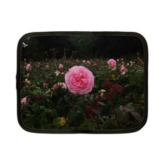 Pink Rose Field Ii Netbook Case (small)