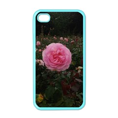 Pink Rose Field Ii Iphone 4 Case (color)