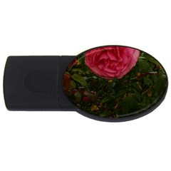 Round Pink Rose Usb Flash Drive Oval (4 Gb)