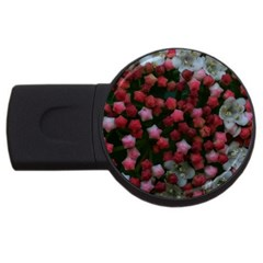 Floral Stars Usb Flash Drive Round (4 Gb) by okhismakingart