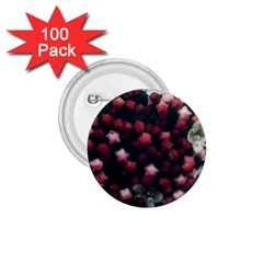 Floral Stars  Dark Red 1 75  Buttons (100 Pack)