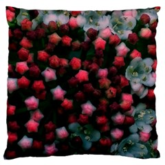Floral Stars  Bright Large Flano Cushion Case (two Sides) by okhismakingart