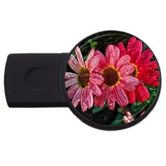 Three Dripping Flowers Usb Flash Drive Round (4 Gb)