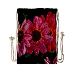 Three Dripping Flowers Drawstring Bag (small)