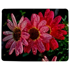 Three Dripping Flowers Jigsaw Puzzle Photo Stand (rectangular)